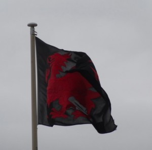 black-welsh-flag-2013-05-31 15.10.10-cropped